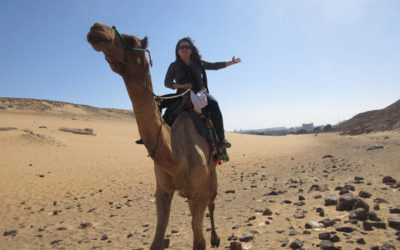 VLOG 8 – Feeding a Camel on Aswan's West Bank